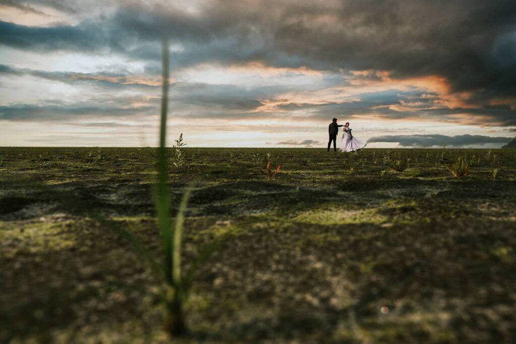 Search wedding photographer